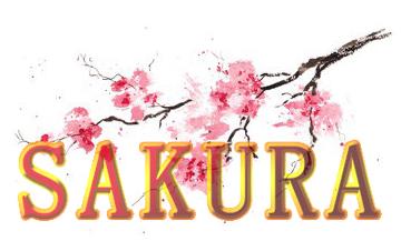 Sakura Badajoz, restaurante japonés