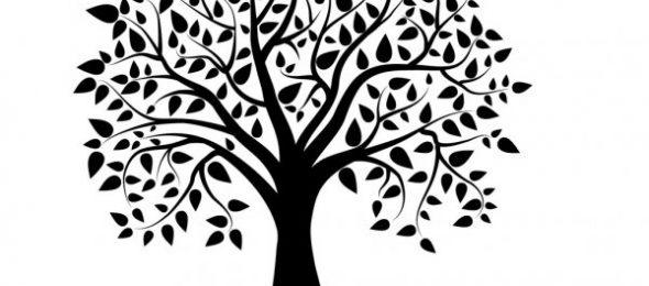 El  árbol podrido